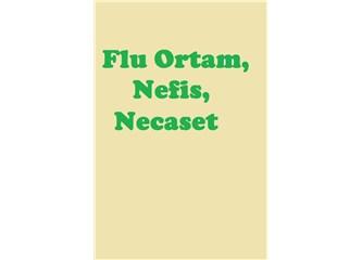 Flu Ortam, Nefis, Necaset