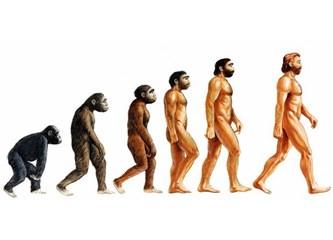 İnsan Düşünen Hayvan mıdır?
