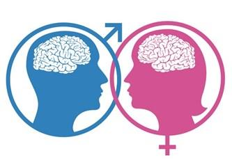 Kadın ve Erkek Beyni Savaşları