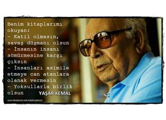 Yaşar Kemal'in Simgesi: İNCE MEMED