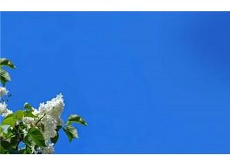 Gökyüzü Ve Düşünmek