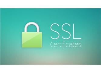 SEO İçin SSL Sertifikasının Önemi ve Kullanımı