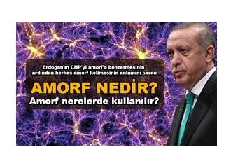 """Cumhurbaşkanı Erdoğan, CHP'ye Neden """"Amorf"""" Dedi?"""