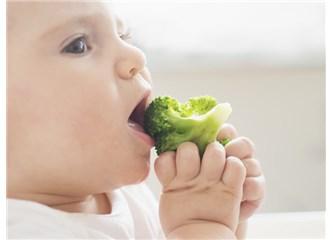 Çocuğum Yemek Seçiyor!