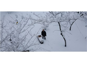 Kışları Pek Sevmem Ben