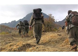 PKK 30 Yıldır Dağlarda Kurşun Atacağına Sokaklarda Slogan Atsaydı Daha İyi Olurdu