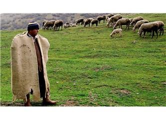 Ölümsüzlüğe Geçen Çoban