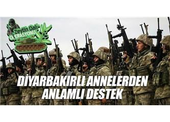 Türkiye'deki Kürtler Zeytin Dalı Harekatına Nasıl Bakıyor?