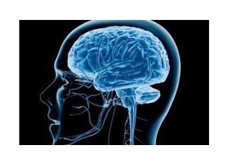 İnsan  Beyninde   İyilik  ve  Kötülüğün   Düzeni