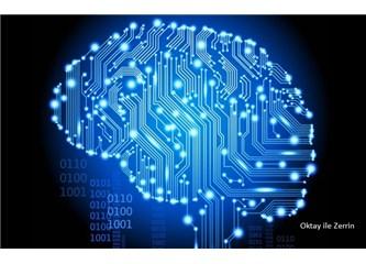 Hafıza Bilgiyi Nasıl Tutar? Nasıl İşler?