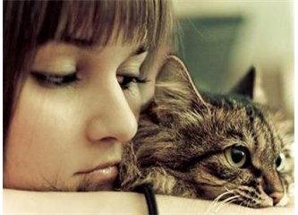 Kediler ve Sinirsel Nöbetler