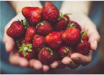 Çileğin Muhafazası ve Meyvelerin Kararmasını Önlemek