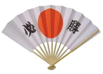 Japonların Şoklama Sistemi