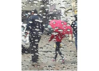 O Yağmur Damlaları, Kutsalımızdı.