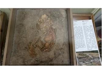 Çatalhöyük'te Küçük Detaylar