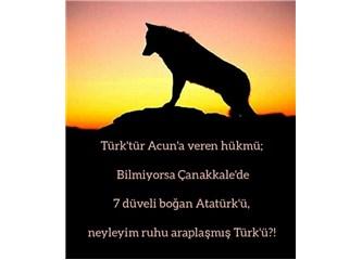 Ne Mutlu Türk'üm Diyene