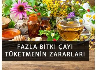Bitki Çaylarını Fazla Tüketirsek Zararlı Olur mu?