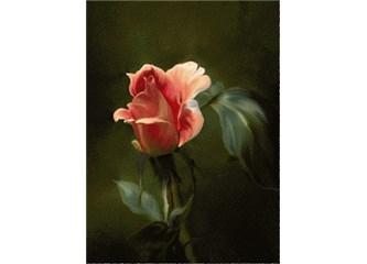 En Güzel Çiçek...