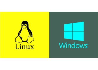Linux Hosting ve Windows Hosting