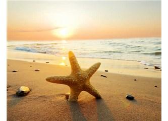 Deniz Kum Güneş Sizi Hasta Etmesin!