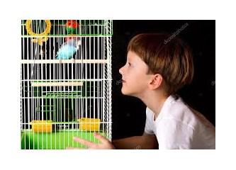 Kafese mi Koymalı Çocukları?..