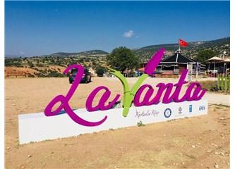 Lavanta Kokulu Köyün Sırrı