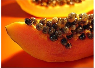 Papaya (6)