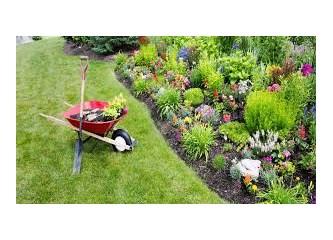 Eylül Ayında Bahçede Yapılacak İşler Nelerdir?