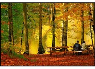 Ey Aşk!  Sonbaharlarda Uğrama Yanıma