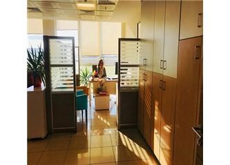 Ofis Ortamında Hayatta Kalmanın 5 Yolu