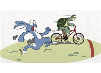Girişimcilik; Tavşan ve Kaplumbağa