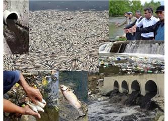 Zehir Gibi Akar Nehirlerimiz