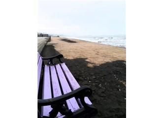 Kadın, Deniz ve Summer's End