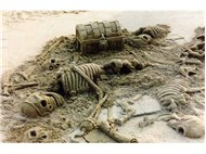 Kumdan hayatlar