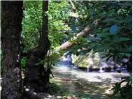 Muğla-Marmaris-Turgut-Turgut şelalesi-kokcuffgk
