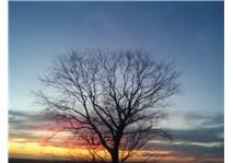 Doğa'nın Bileşenleri ve Aziz Sancar'ın Fotoğraf Karesi'nden Gençliğe Hitaben verdiği anlamlı  mesajı