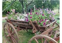 Erkan çiftliği