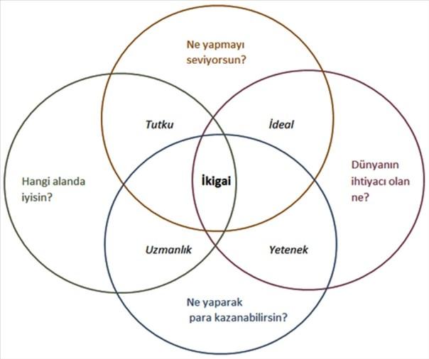 ikigai türkçe ile ilgili görsel sonucu